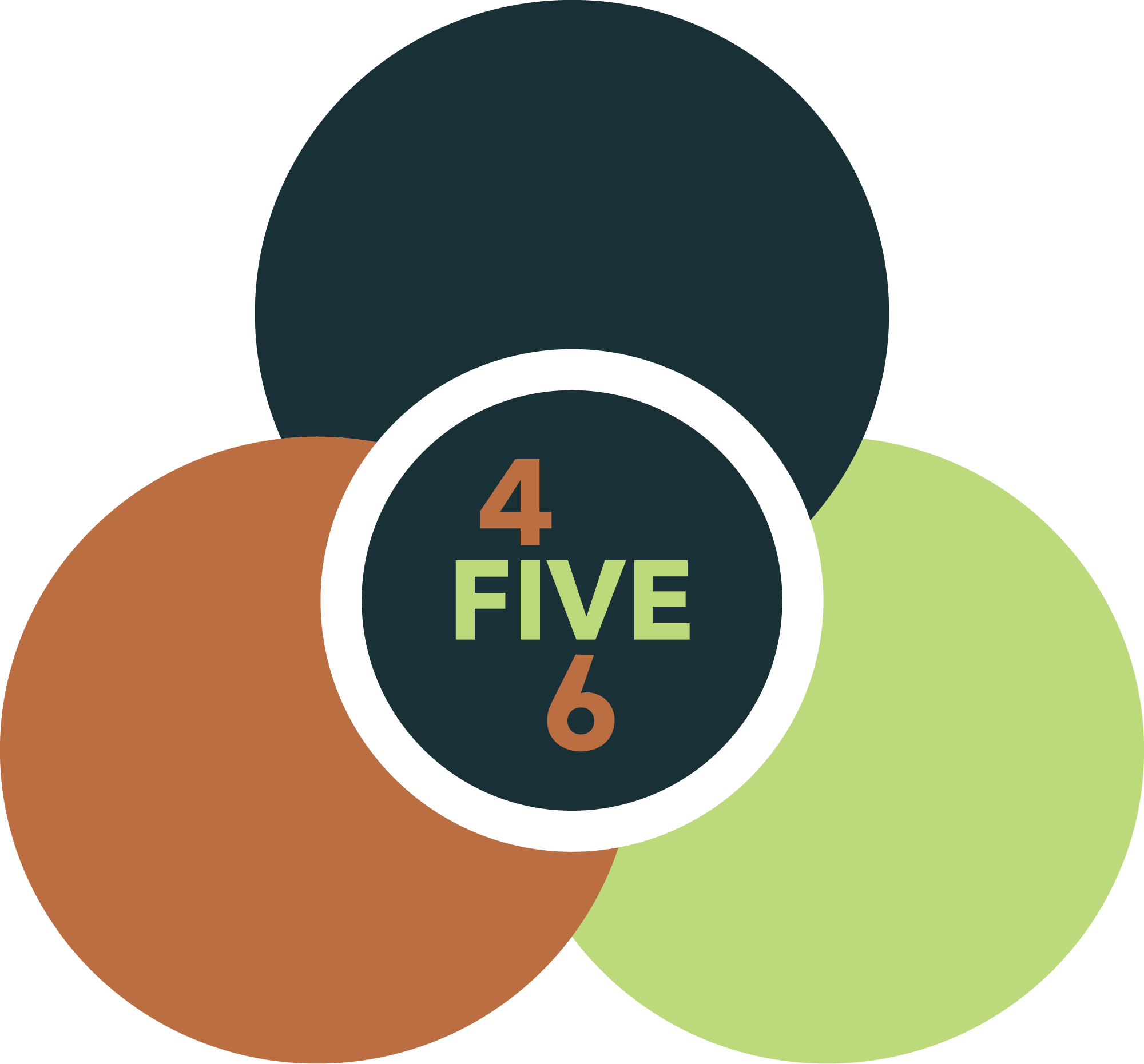 4FIVE6 Values