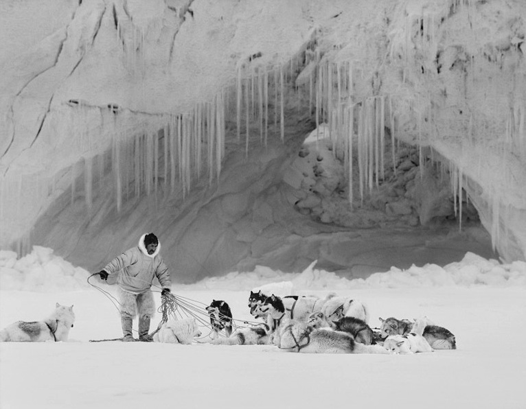 "Still from  ""Last Days of The Arctic"""