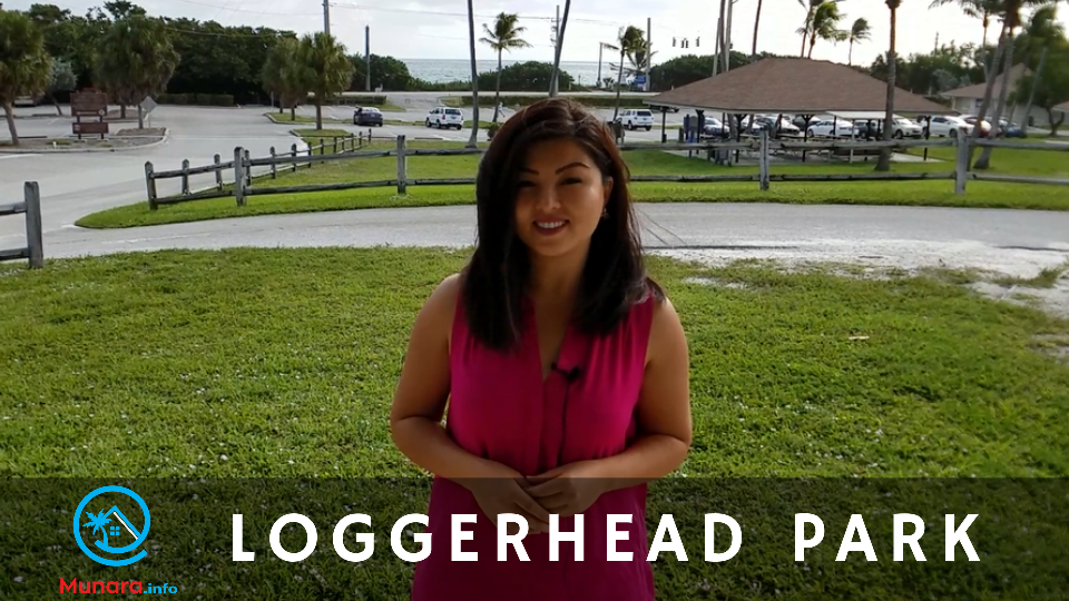 Thumbnail of Loggerhead Park