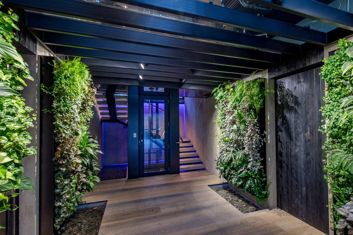 A living wall at the entrance to an architecturally designed house called Cascata in Queenstown