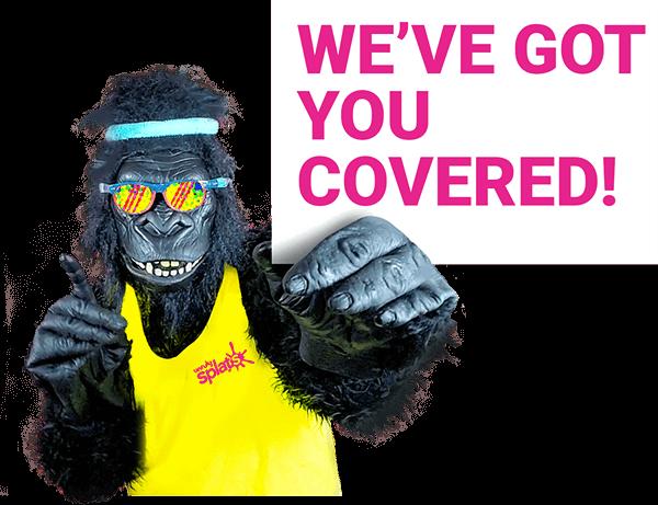 Crash: We've Got You Covered