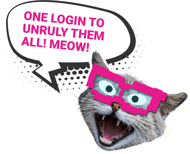 Bloopers One Login to Rule Them All