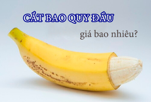 Chi-phi-cat-bao-quy-dau