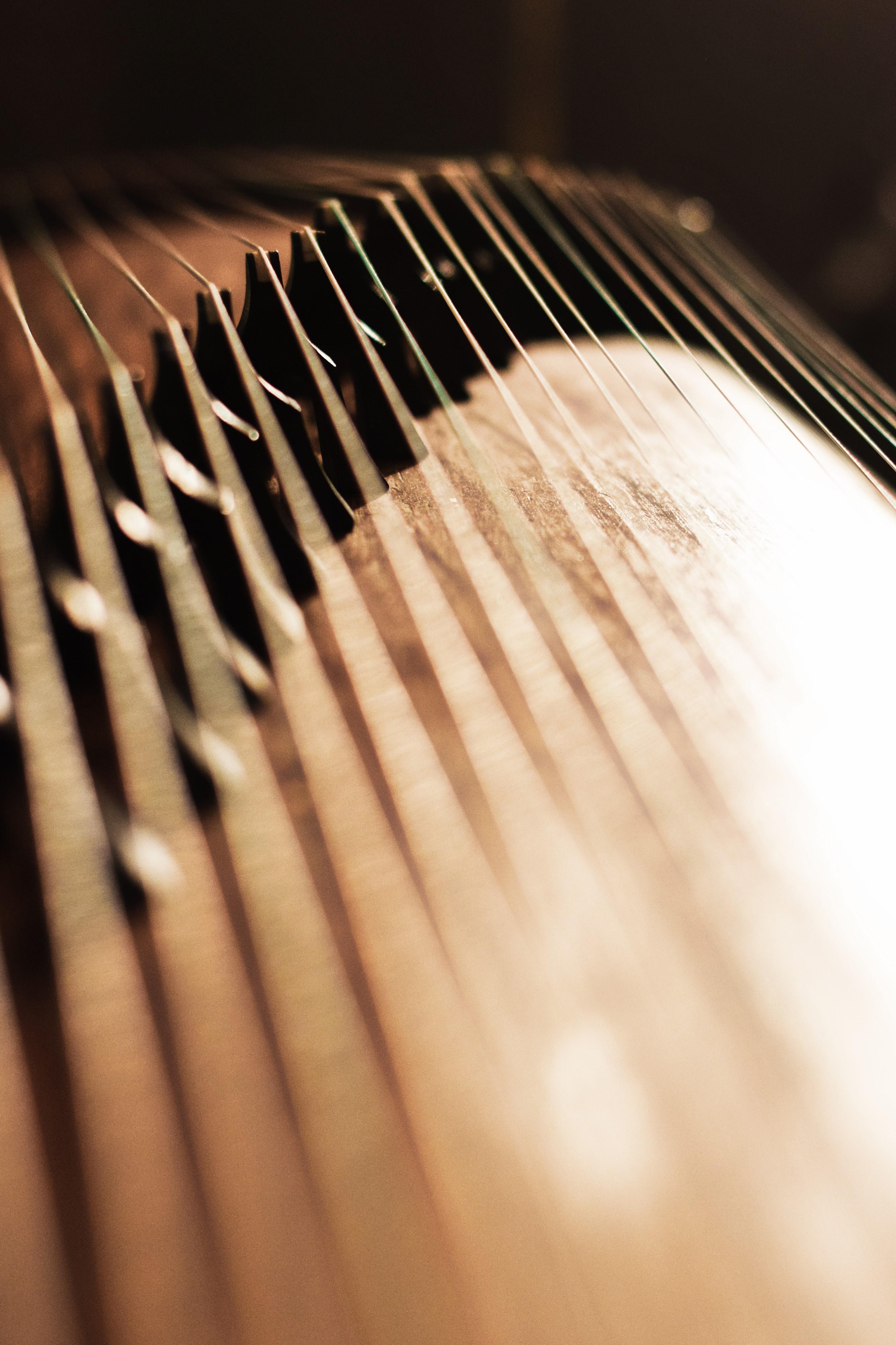 Guzheng shine