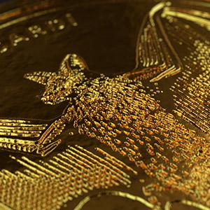 Projeto Bacardi Gold