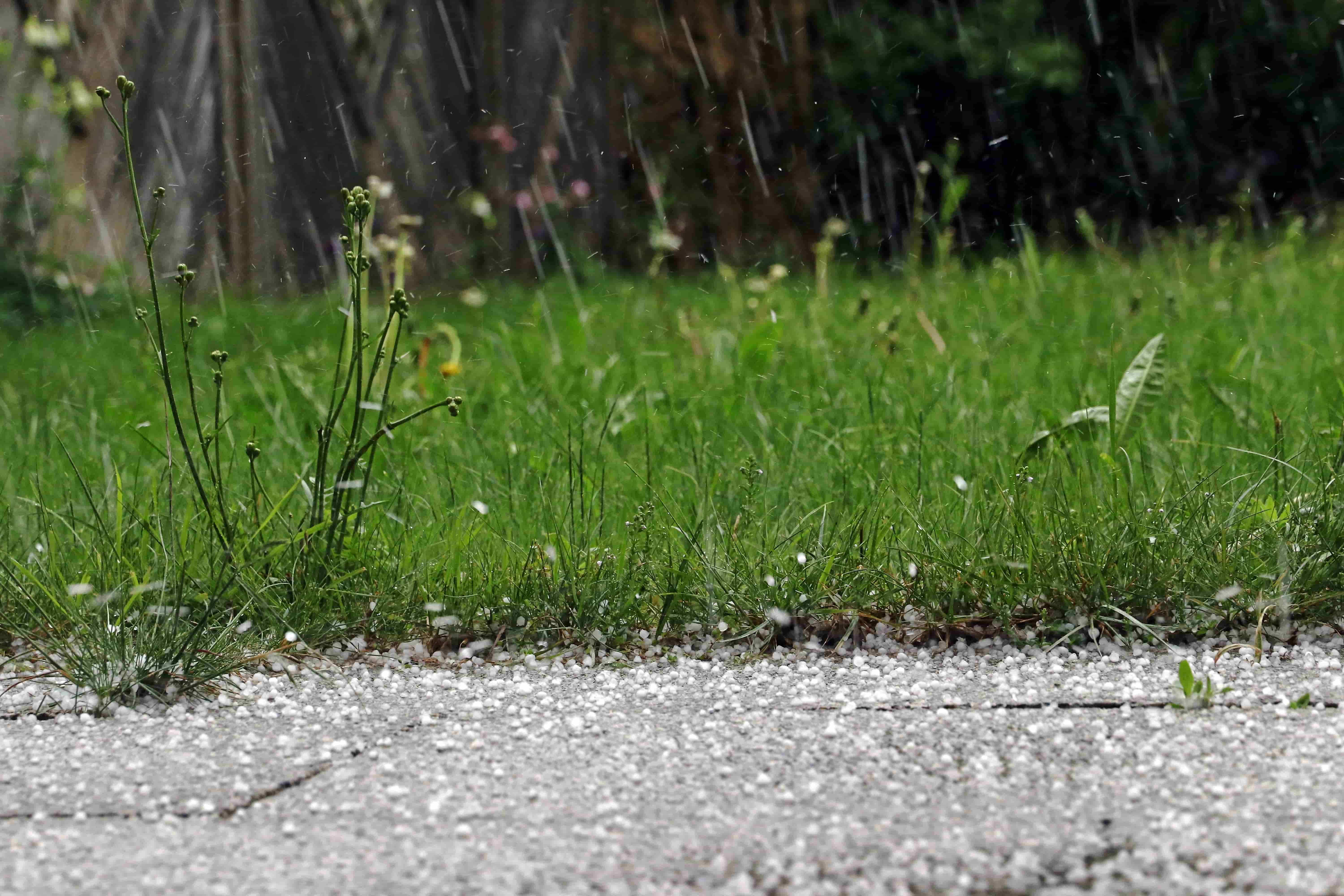 Can solar panels withstand hail?