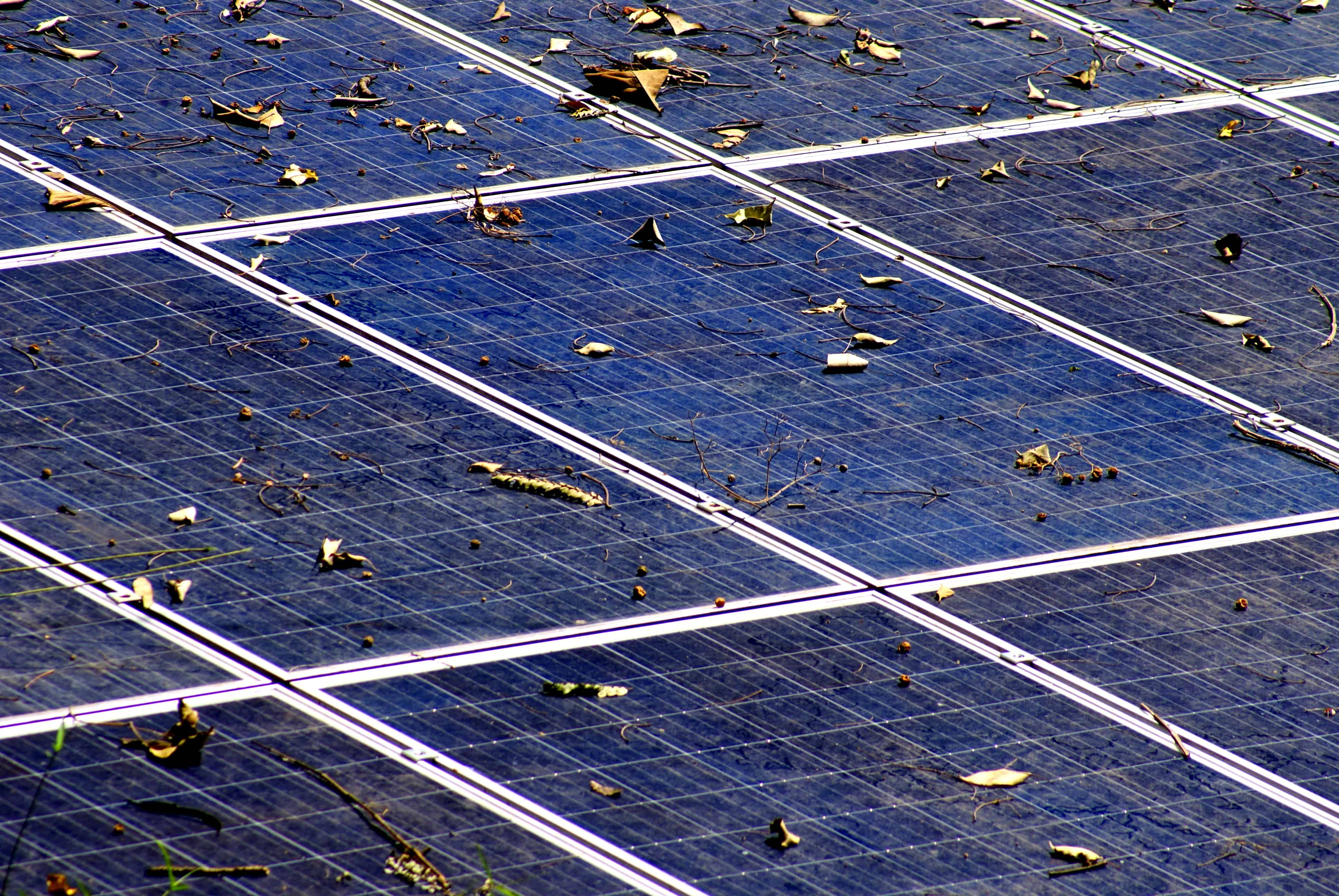 solar panels during fall