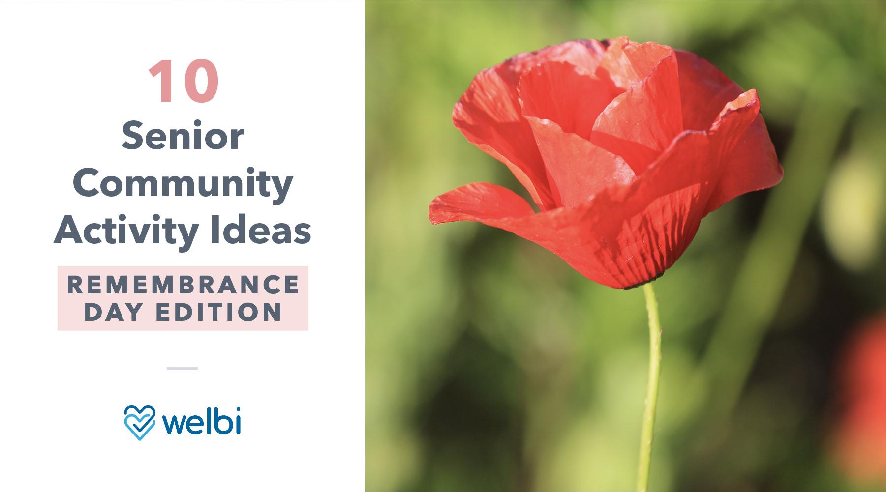 10 Senior Community Activity Ideas: Remembrance Day Edition
