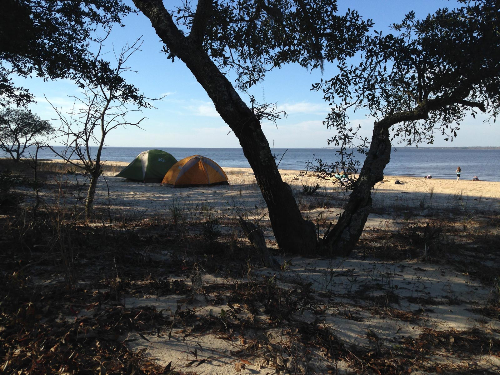 Photo of a beach front campsite in Croatan National Forest in North Carolina