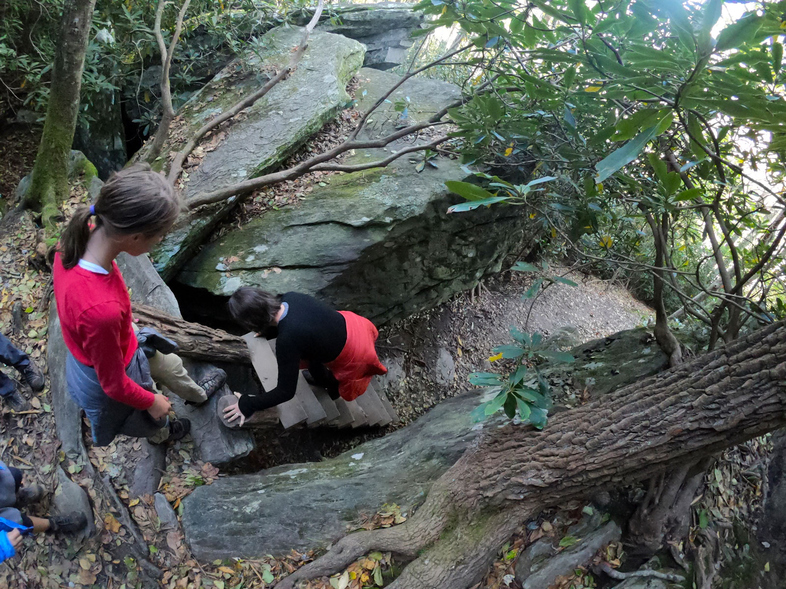 Photograph of daughter and mother climbing down the steep ladder between the boulders on the Boone Fork Trail near Julian Price Campground on the Blue Ridge Parkway, NC