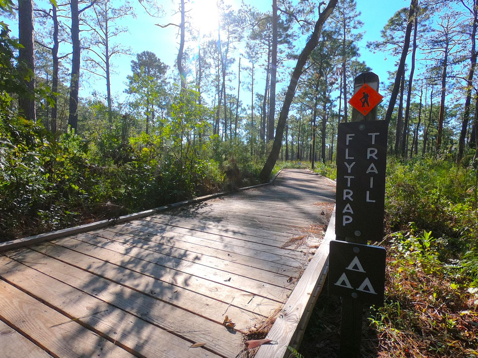 Boardwalk along the Flytrap Trail at Carolina Beach State Park in North Carolina
