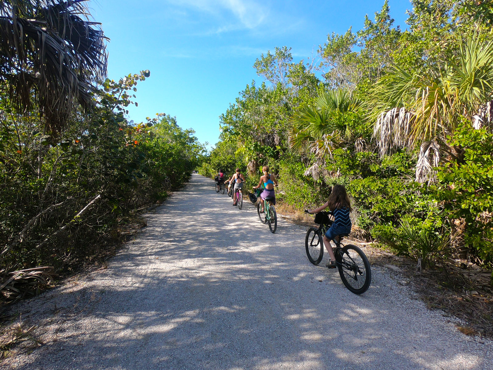 Four people riding bikes single file on Indigo Trail in the J. N. Ding Darling National Wildlife Refuge, Sanibel Island FL