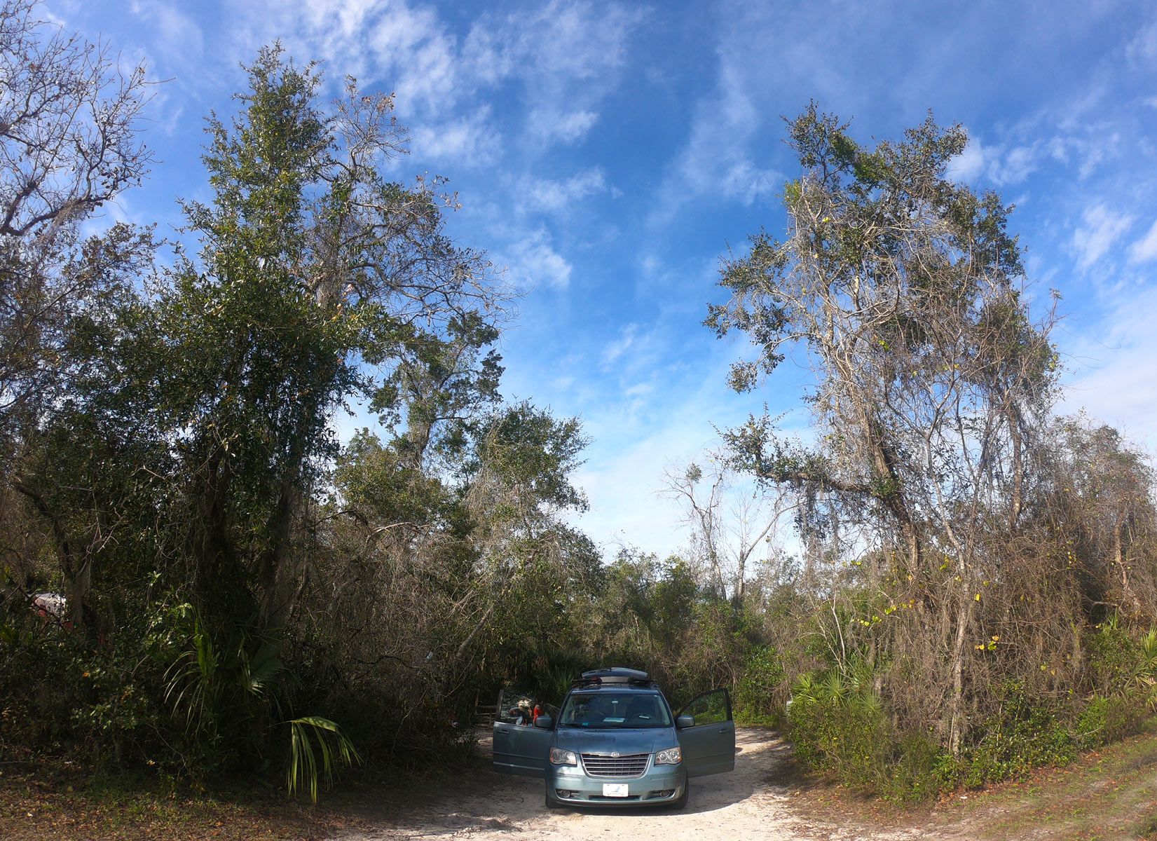 Blue van with open doors at campsite at Blue Spring State Park, Florida