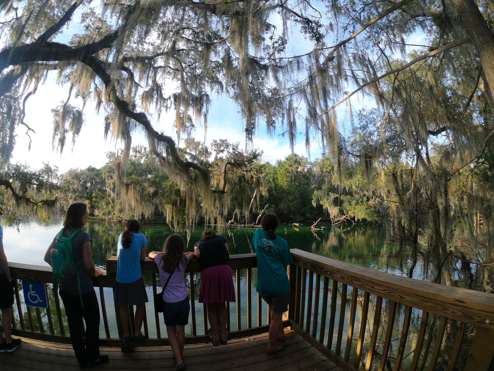 Under live oaks draped in Spanish moss, five people on deck look for manatees at Blue Spring State Park, Florida