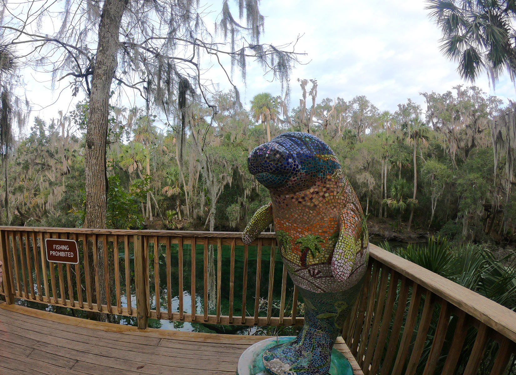 Multi-colored tiled mosaic manatee sculpture on a wooden observation deck at Blue Spring State Park, Florida