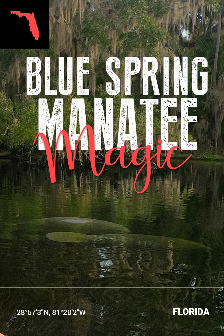Pinterest Pin - Blue Spring State Park
