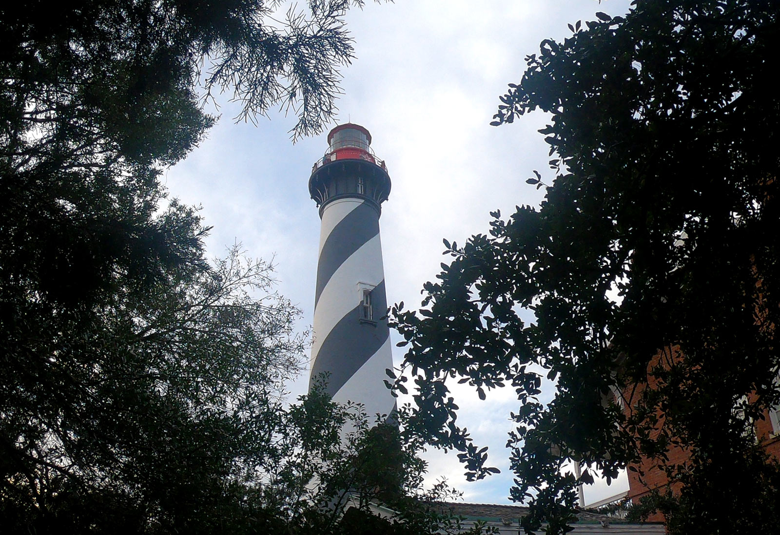 Saint Augustine Lighthouse & Maritime Musuem  with live oaks in Saint Augustine, Florida