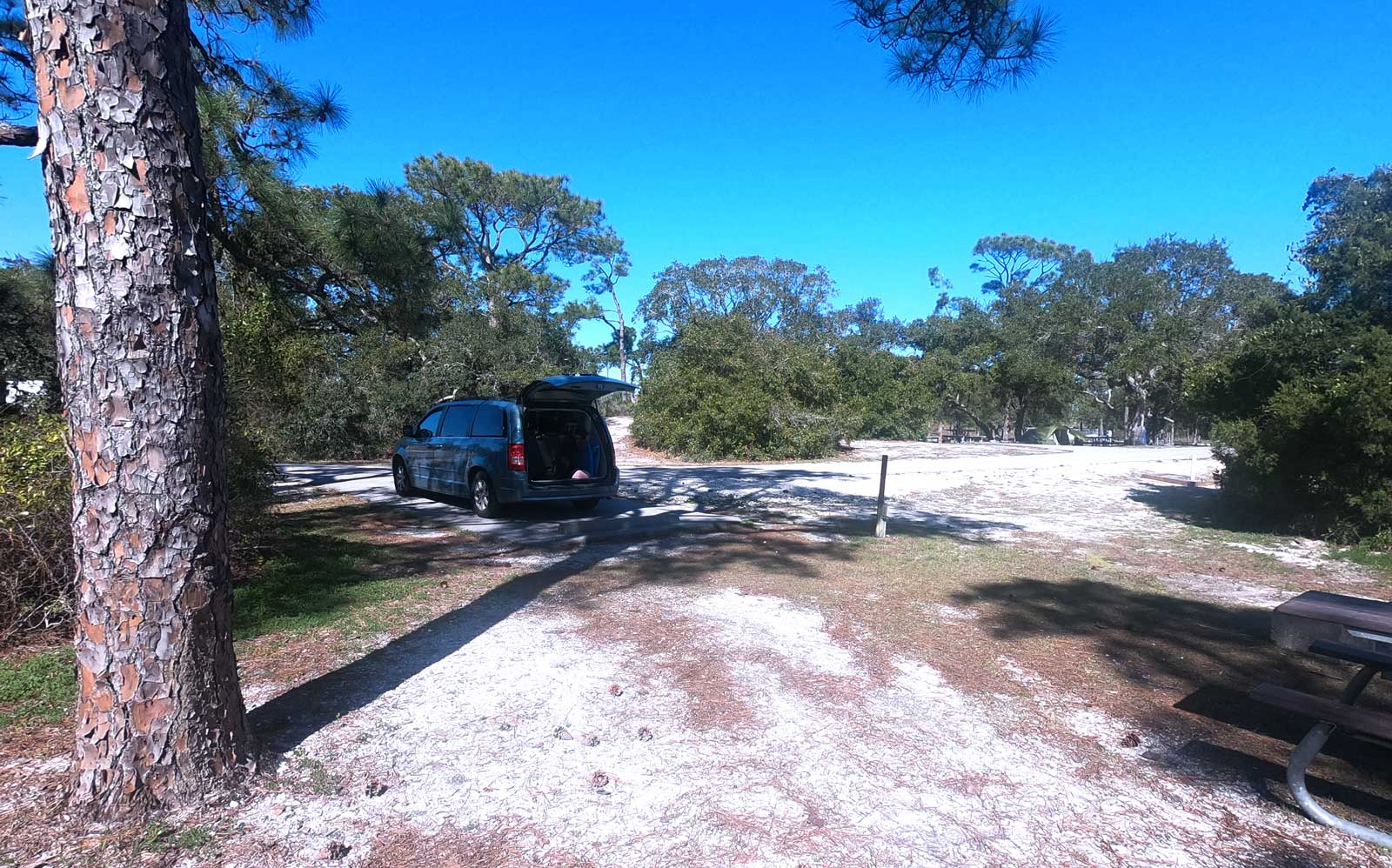 Shaded campsite at Fort Pickens Campground, Pensacola Beach, Florida