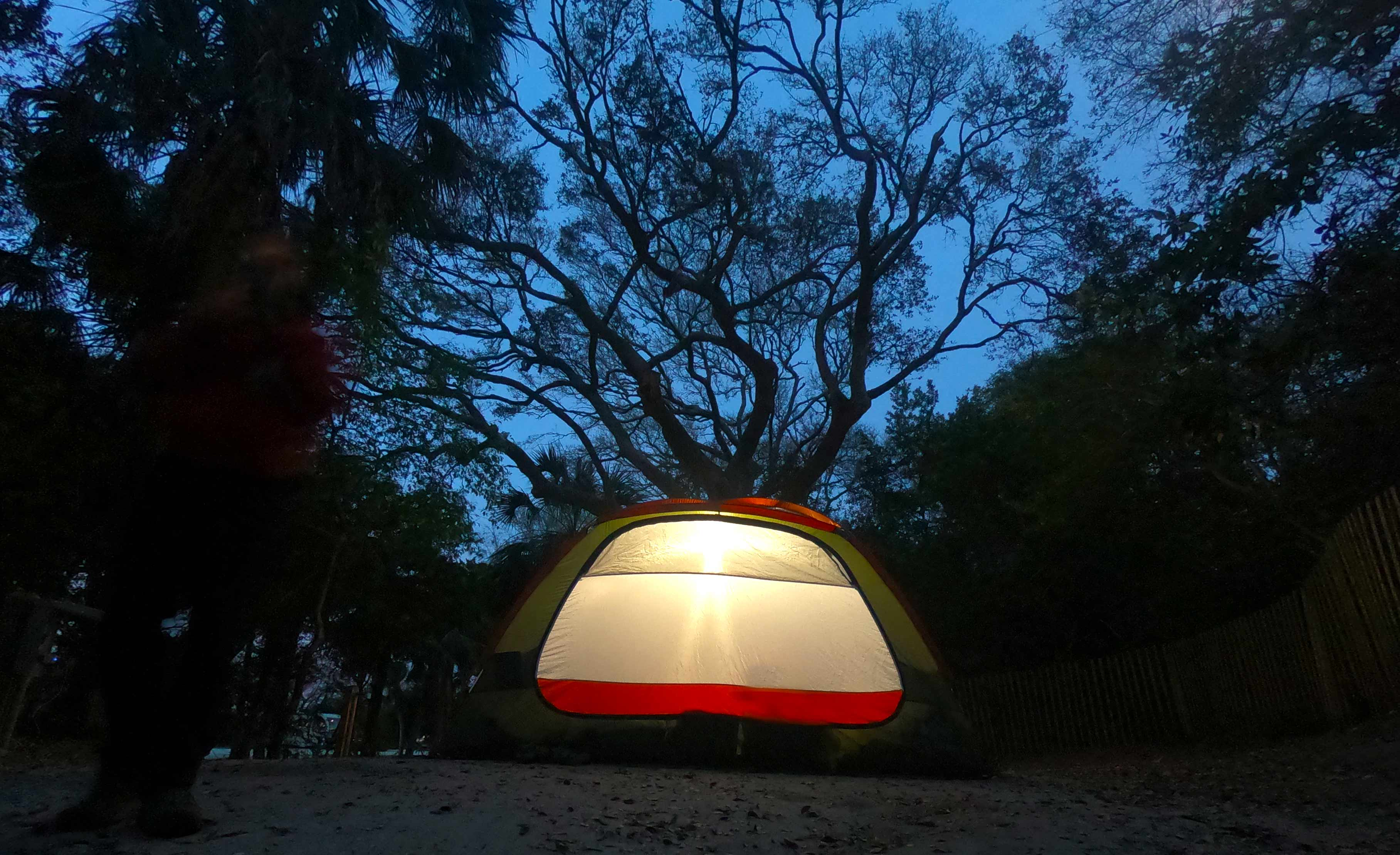 Glowing tent with a live oak in background at night  while camping in Edisto Beach State Park, SC