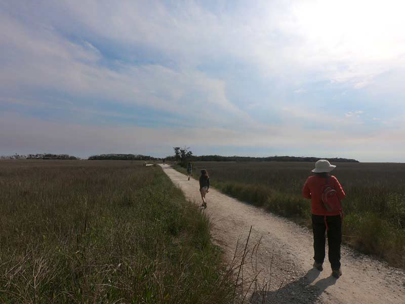 Hiking Botany Bay trail while camping at Edisto Beach State Park, South Carolina