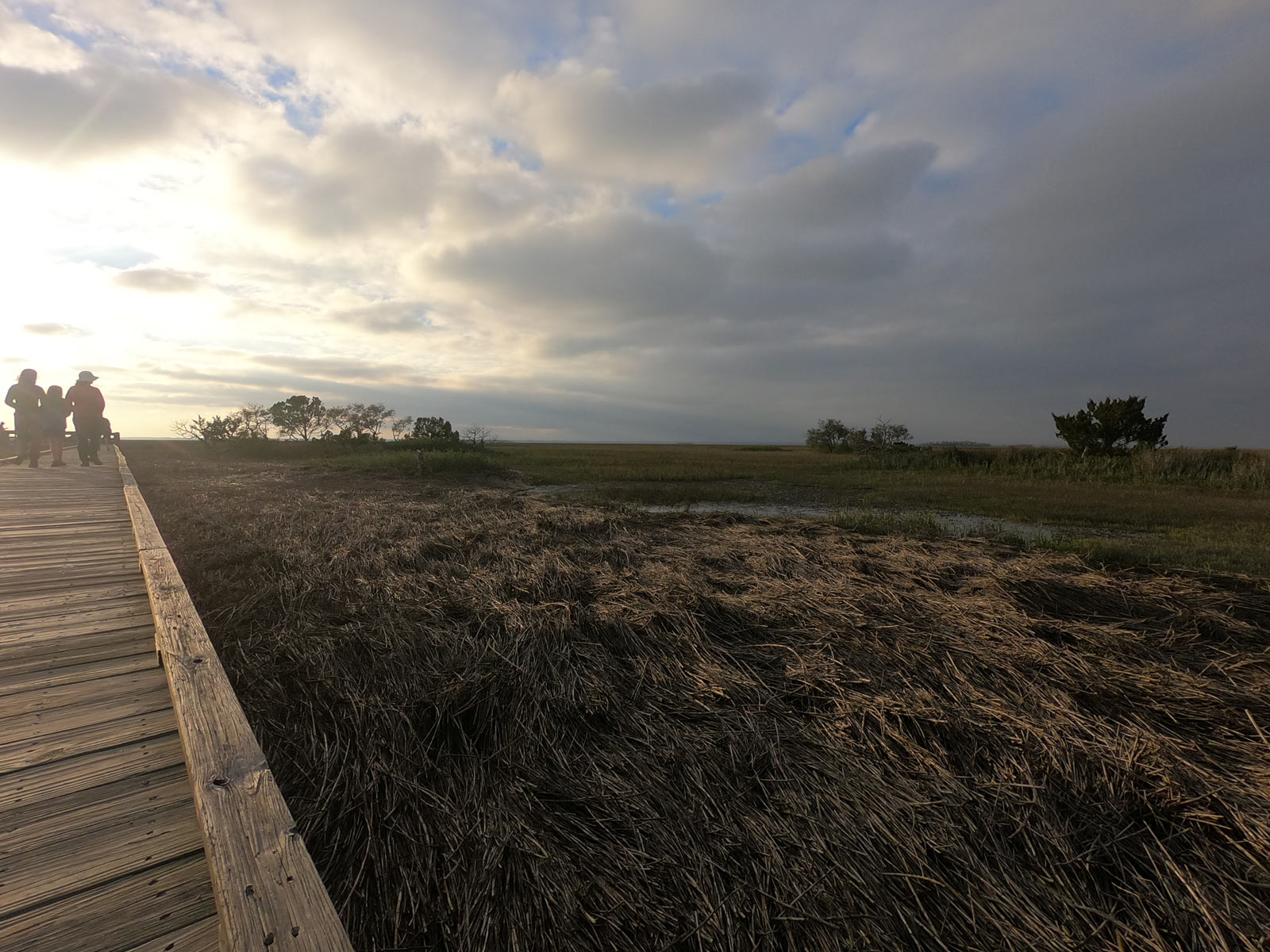 Marshwalk Boardwalk Trail at sunset on Hunting Island State Park, South Carolina