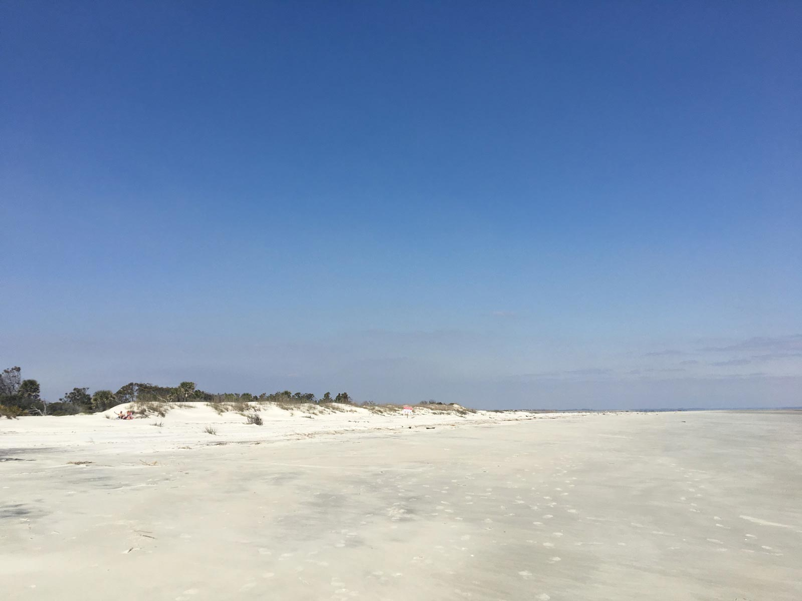 Beach front at Hunting Island State Park, South Carolina