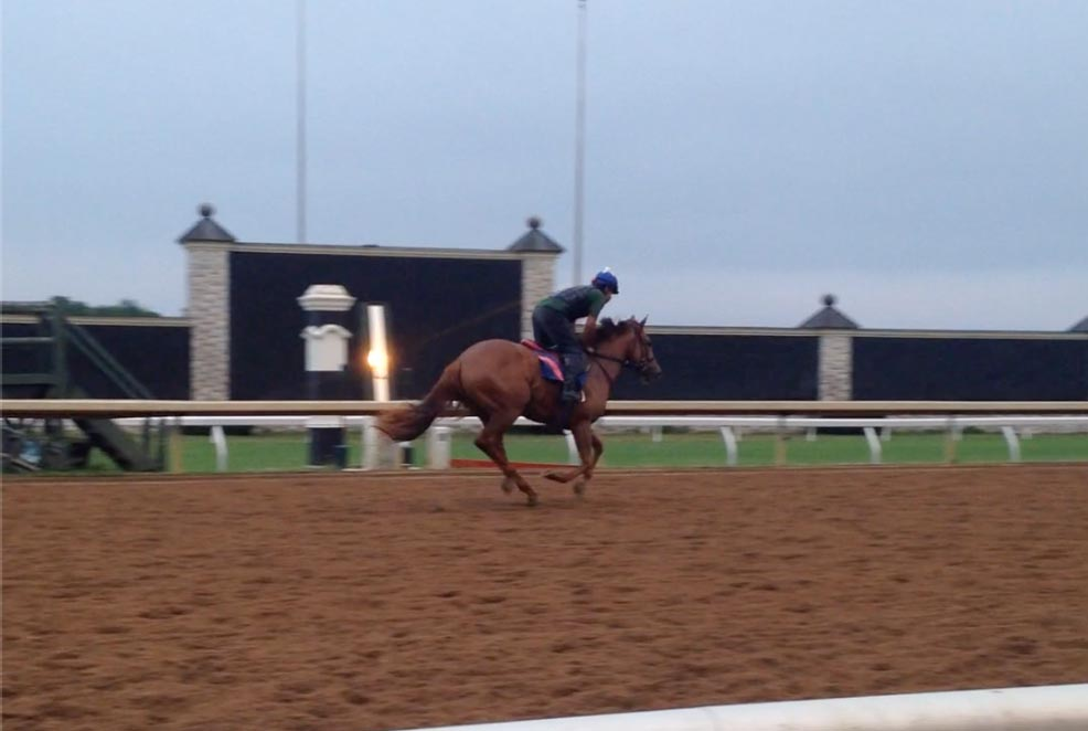 Horse training at Keeneland Race Track, Versailles, Kentucky