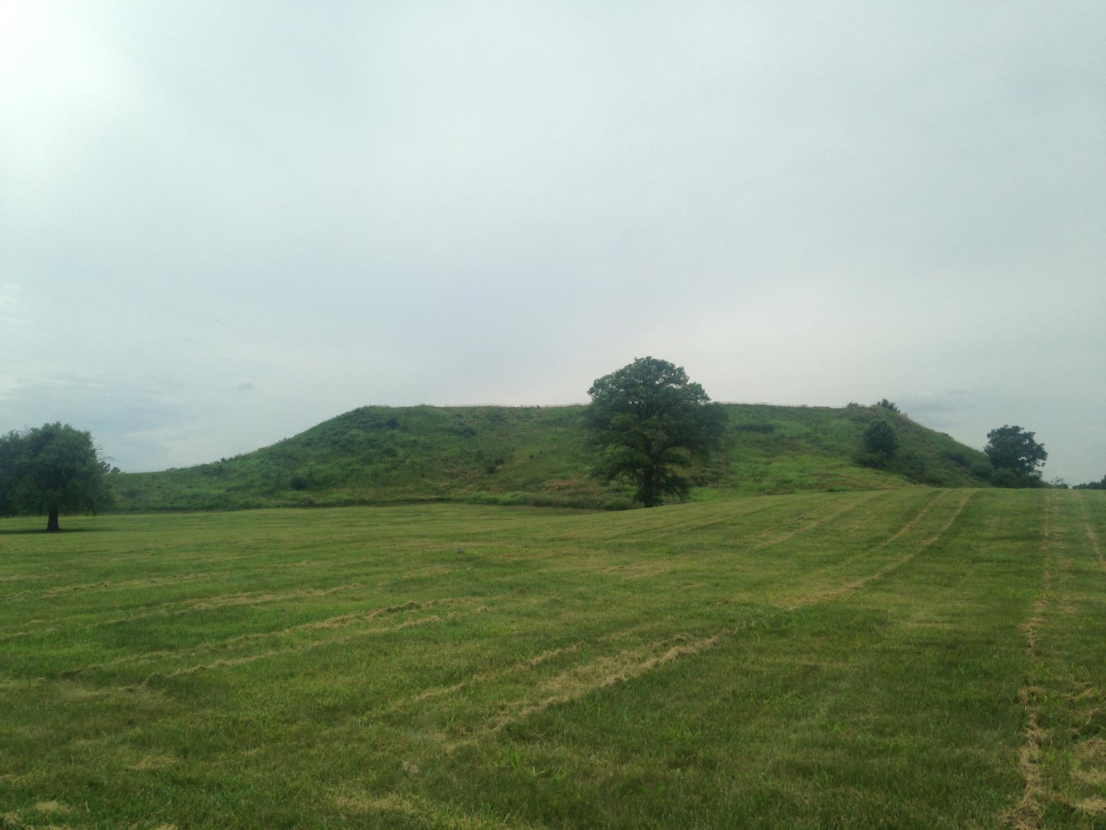 Cahokia Mounds State Historic Site, Collinsville, Illinois