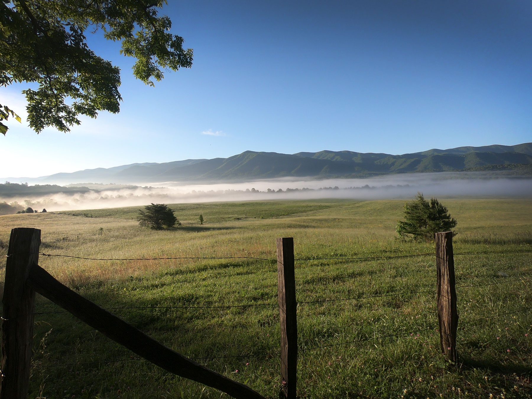 Cades Cove Loop Drive with mist on field in Great Smoky Mountains National Park, Tennessee