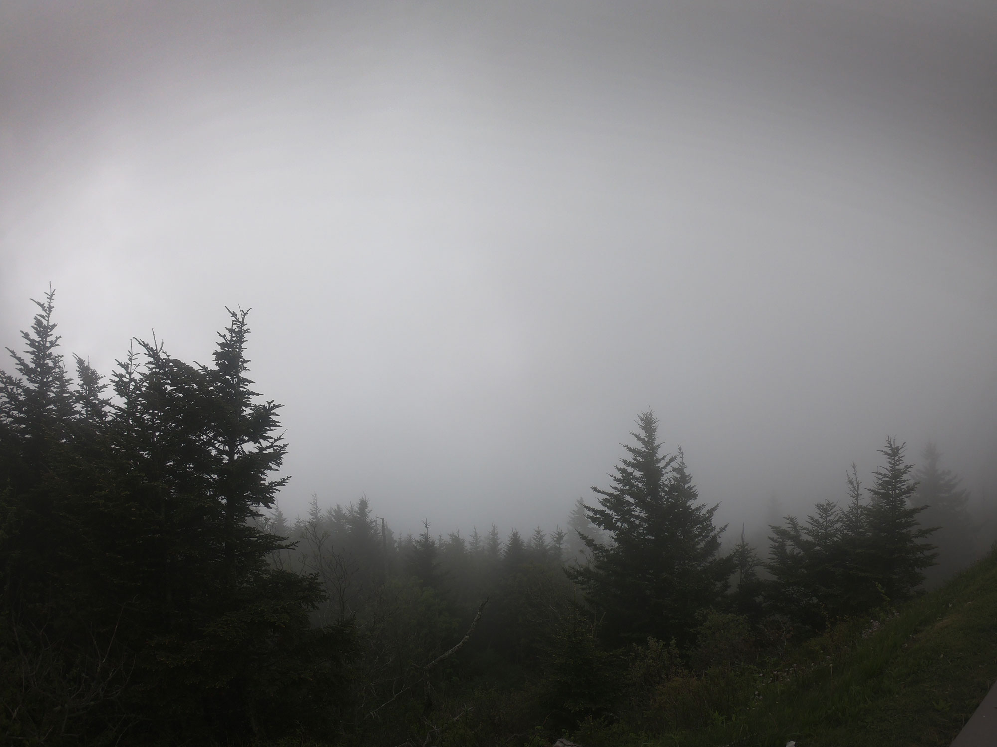 Cloud covered Clingmans Dome in Great Smoky Mountains National Park