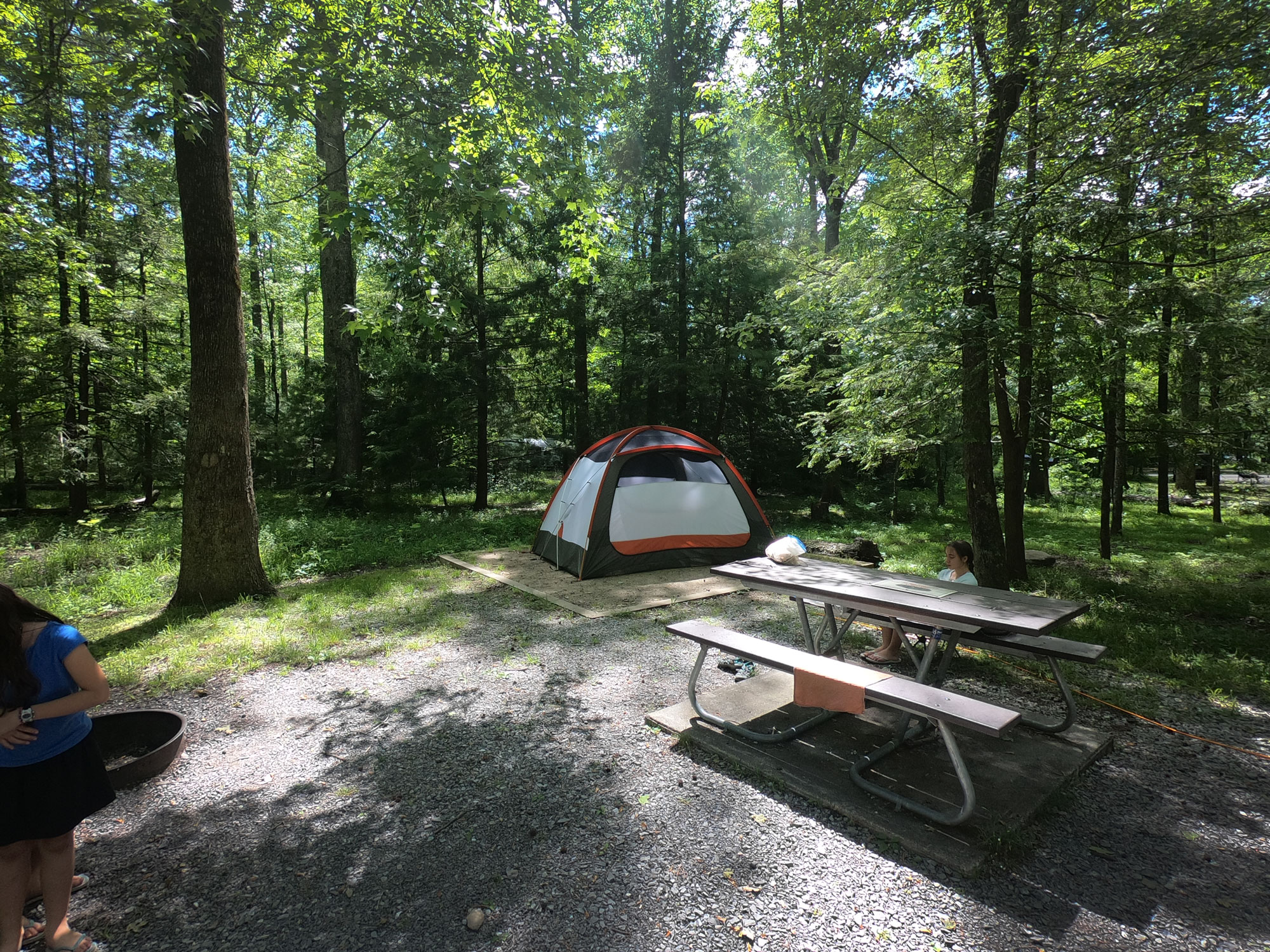 REI tent on camping pad in Cades Cove Campground, Great Smoky Mountains National Park, Tennessee