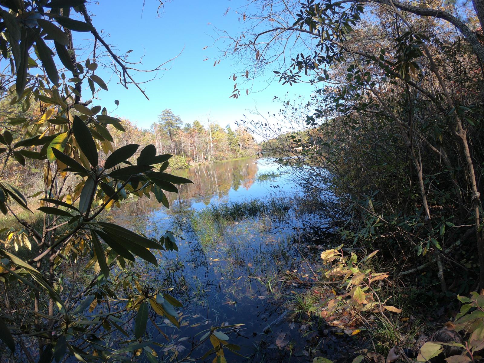 Hiking to the lake in Hanging Rock State Park, North Carolina