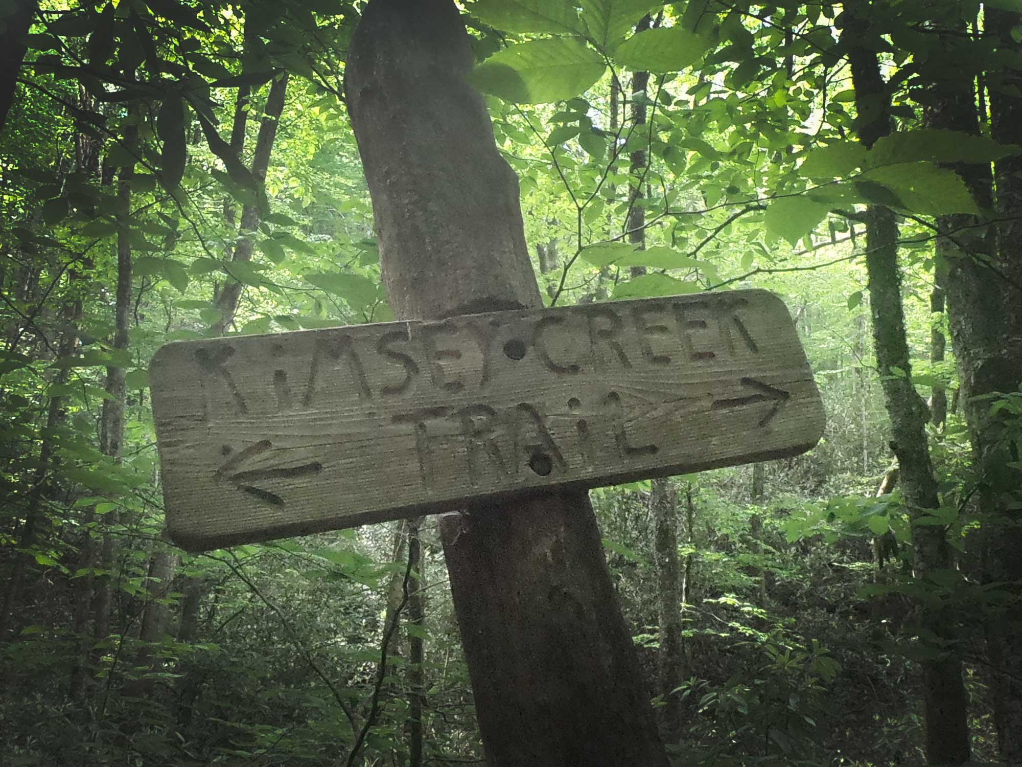 Wooden trail sign for Kimsey Creek Trail