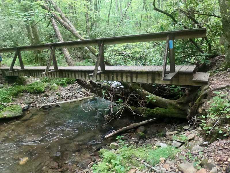 Wooden footbridge over the Kimsey Creek