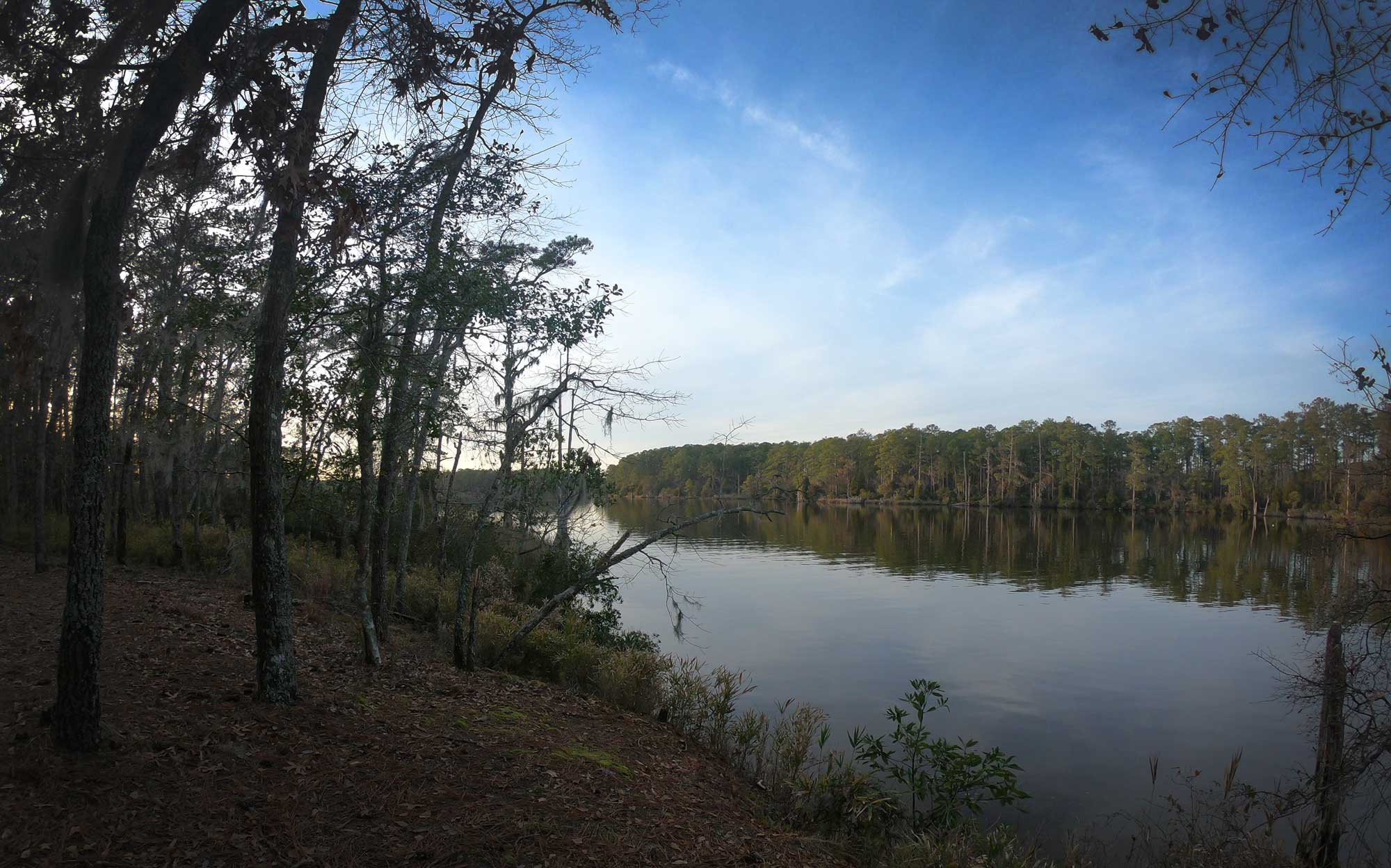 View of Goose Creek from the Ivey Gut Trail in Goose Creek State Park, North Carolina