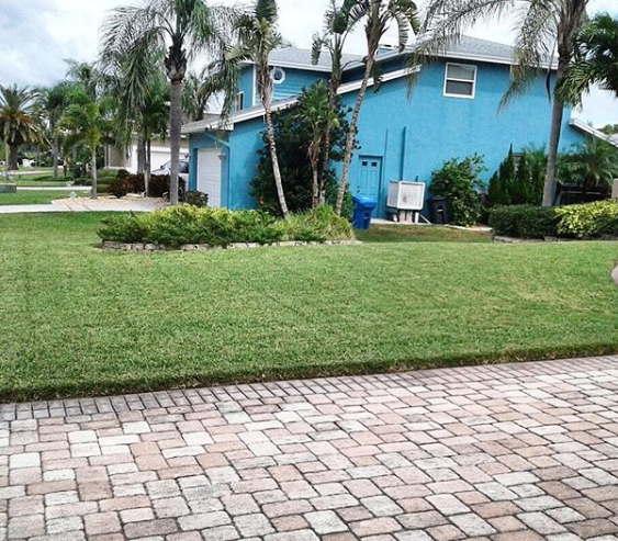 Tampa Bay Irrigation and Lanscaping