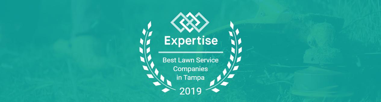 Tampa Lawncare and Irrigation Repair
