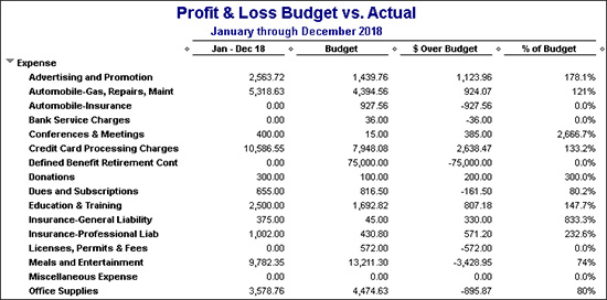 Profit & Loss Budget vs. Actual