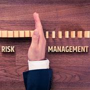 Dominos Risk Management