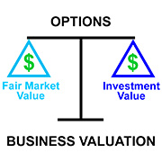 Infographic - Options for Business Valuations