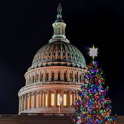 A Christmas tree in front of the Capital building