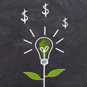 """""""Lightbulb"""" plant with dollar signs"""