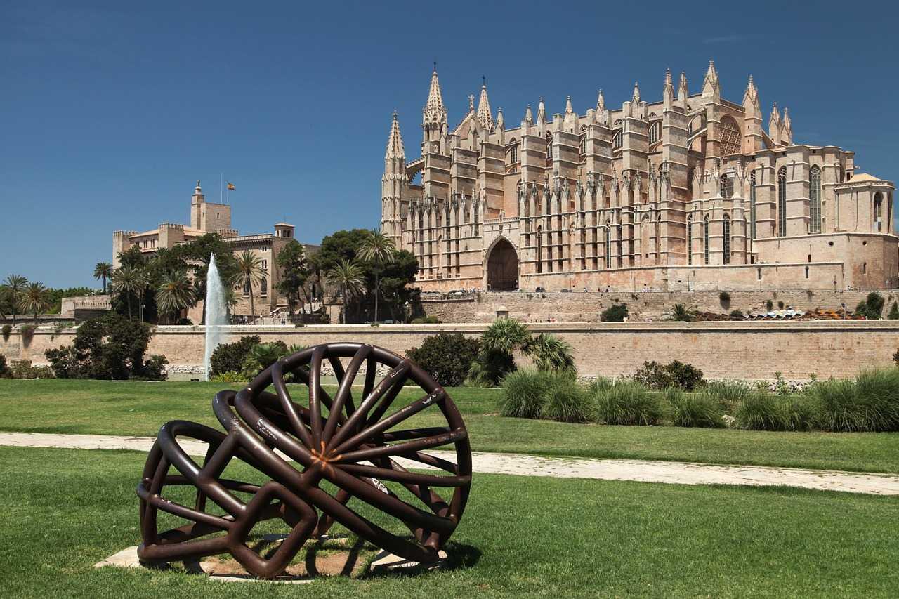 Dr. SAM - dein online Tierarzt auch auf Mallorca