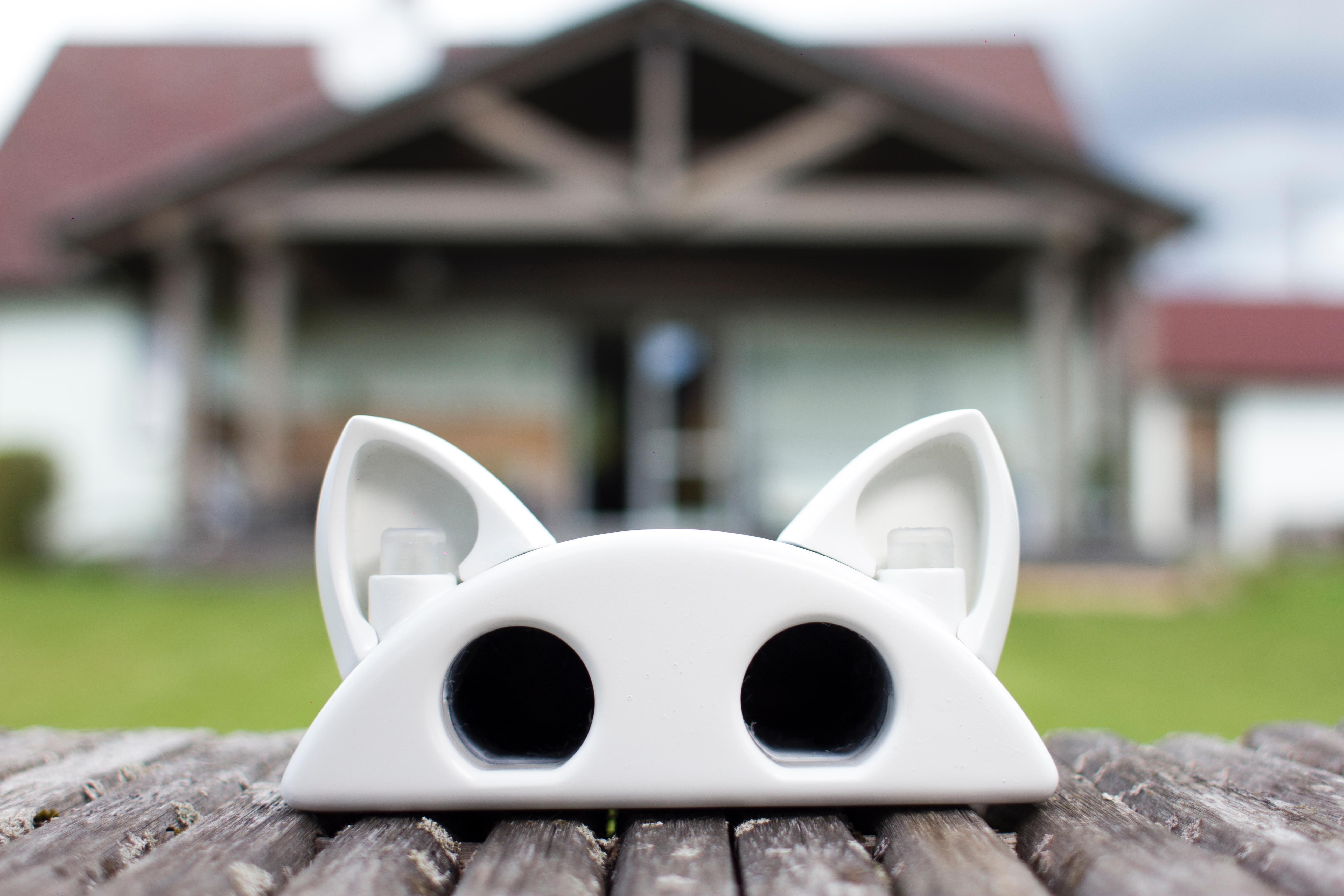 smart mouse trap. Black Bedroom Furniture Sets. Home Design Ideas