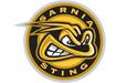 Sarnia Sting Logo