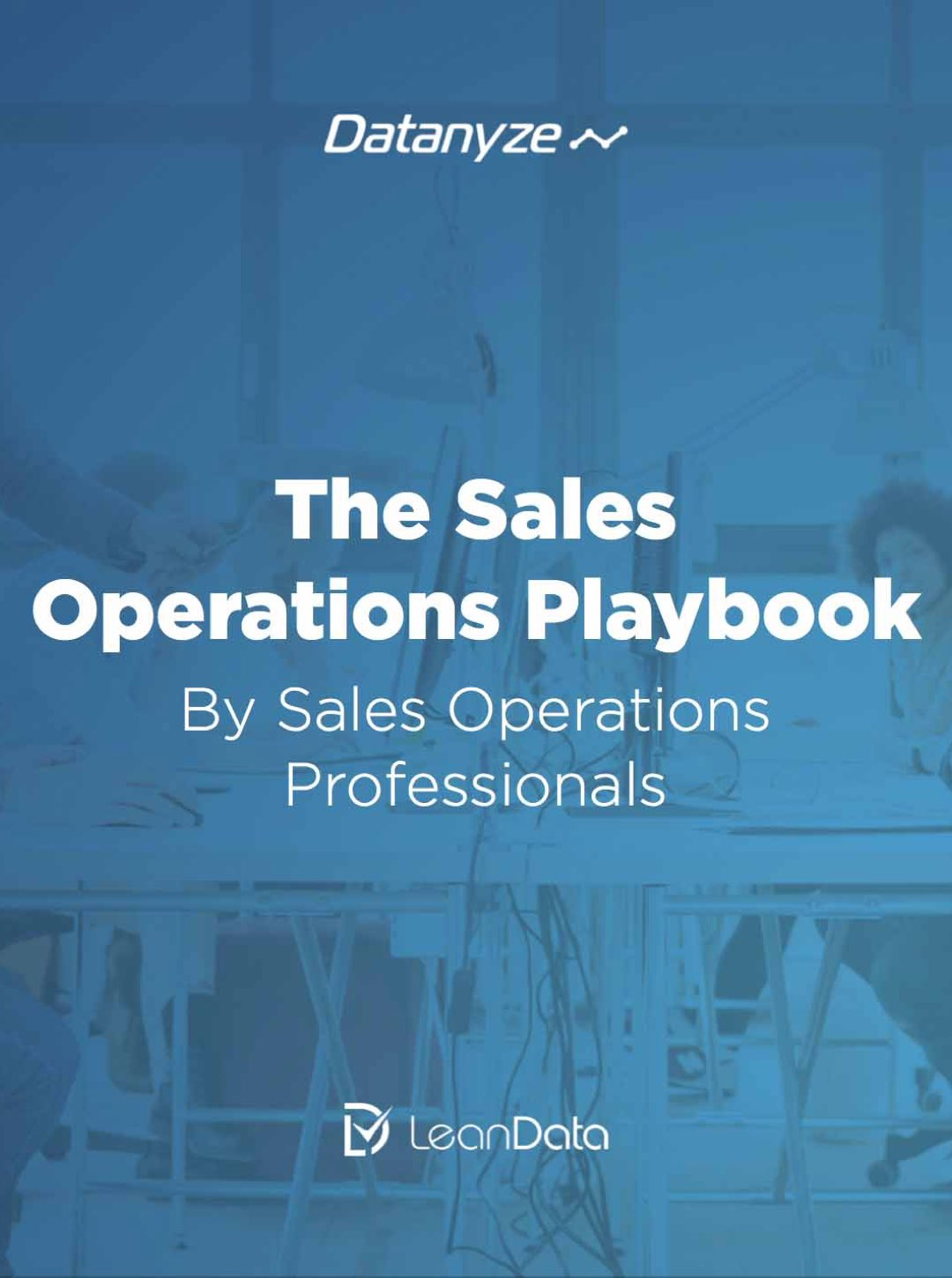 The Sales Operations Playbook