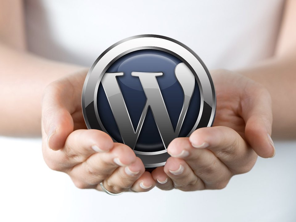25 Interesting Facts About WordPress