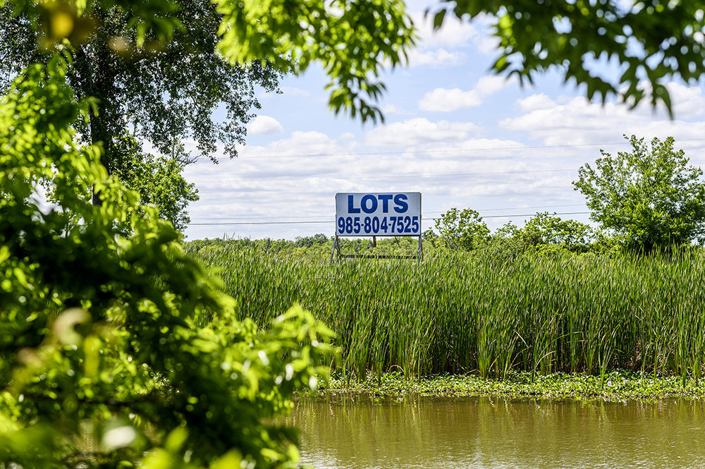 A sign advertising lots for sale, sitting alone above marsh water and reeds
