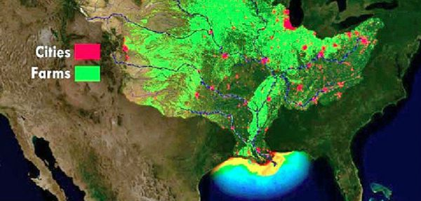 This graphic shows the locations of cities and farms that produce nutrients that enter the Mississippi and Atchafalaya river systems and cause algae blooms in the Gulf of Mexico that result in the creation of low-oxygen hypoxia conditions, the dead zone.