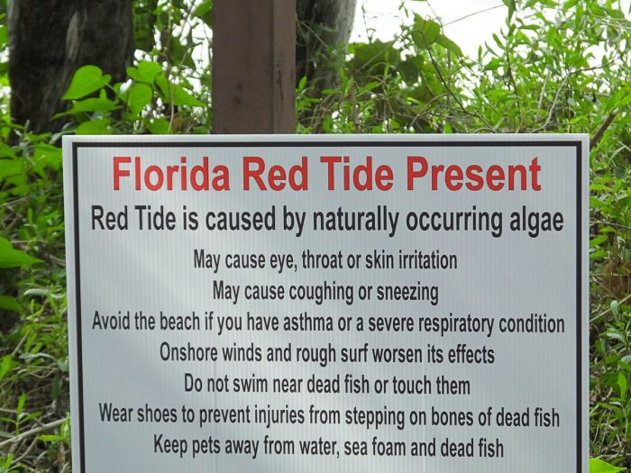 warning sign about florida red tide present